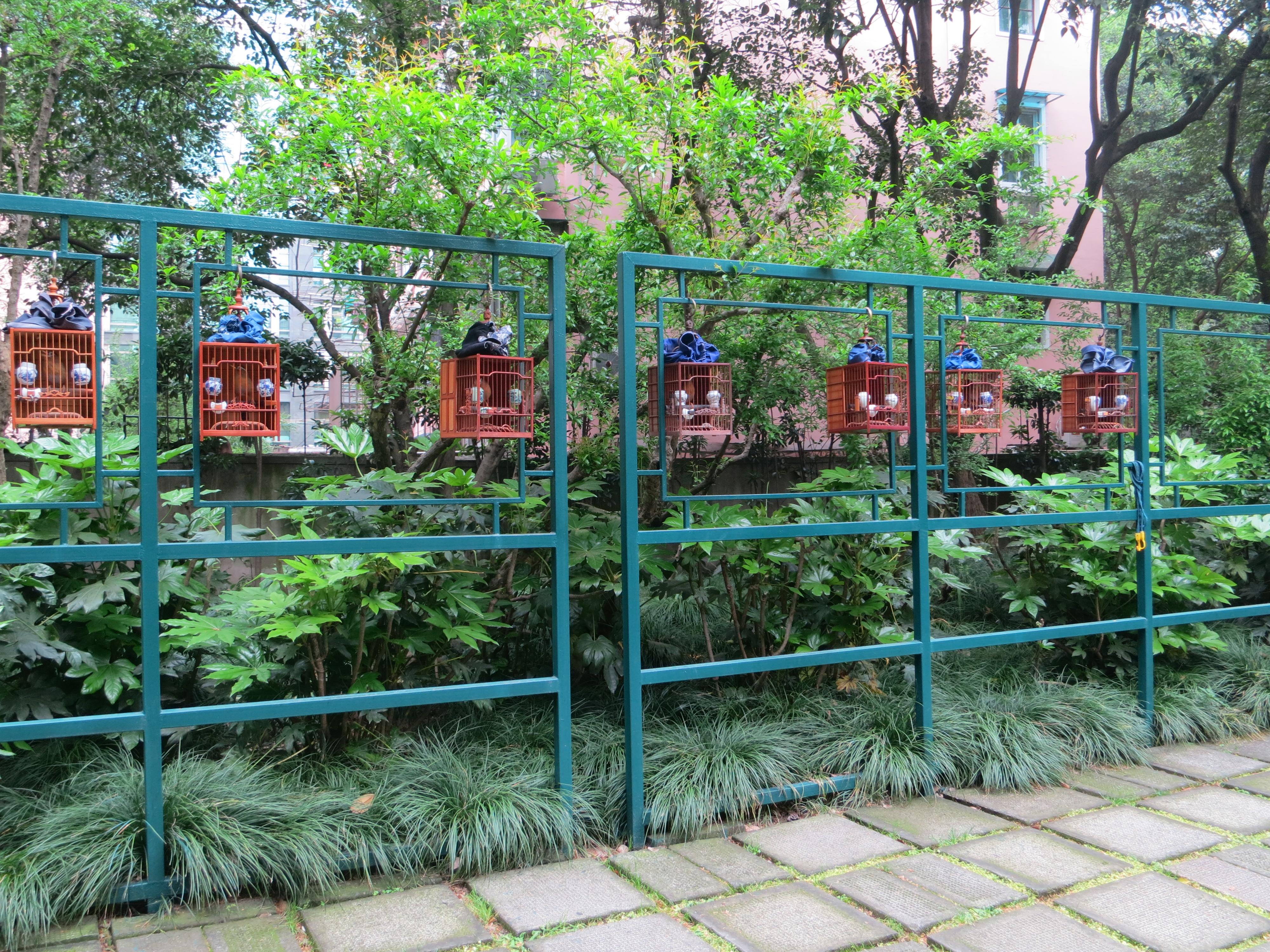 190606 上海の公園2