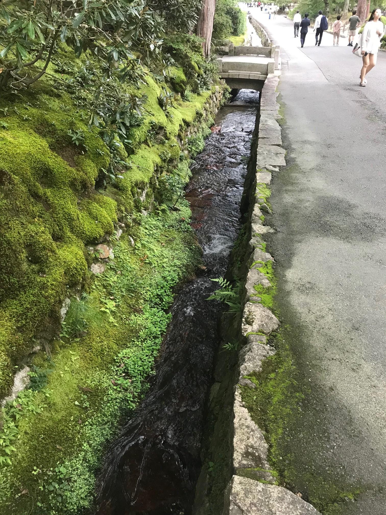 190924 南禅寺の水路
